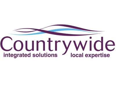 Another senior Countrywide executive leaves the company
