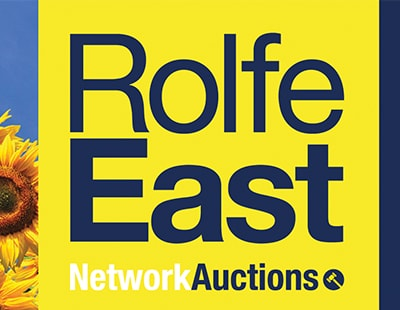 100th agency branch partner named by Network Auctions