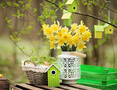Decorating your office for Spring 2016?  If so, send us your pictures...