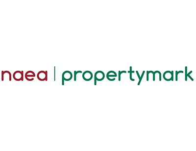 Mystery deepens over resignation of NAEA Propertymark president